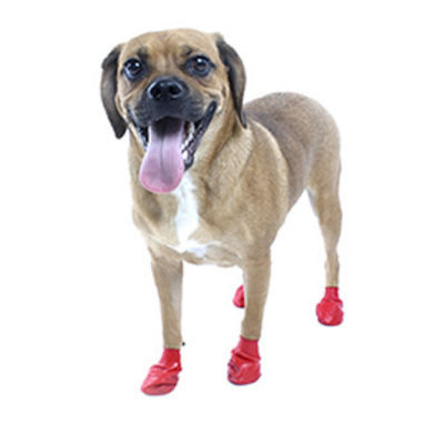"Small PawZ Dog Boots, Red, (2.5"" L)"