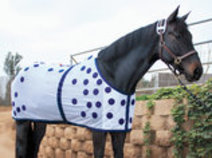 Magnetic Horse Sheet