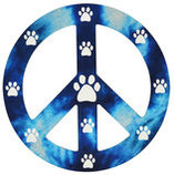Peace Signs Magnet