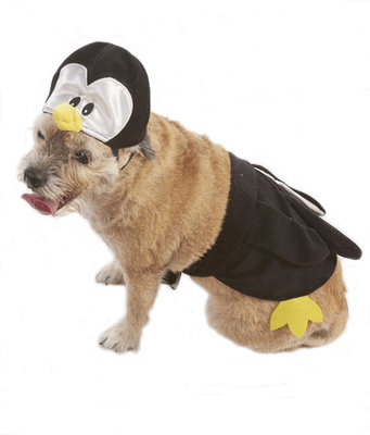 Penguin Halloween Dog Costume