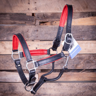 Perri's Soft Padded Leather Halter, Black/Red