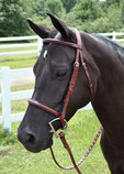 Perri's Professional Fancy Stitched Padded Bridle