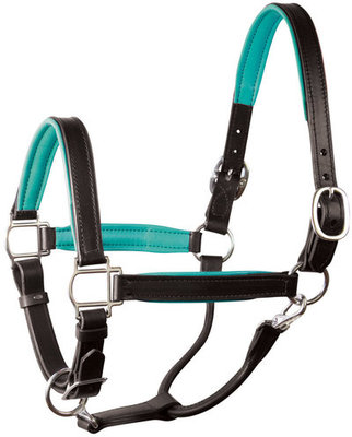 Perri's Soft Padded Leather Halter, Black/Turquoise