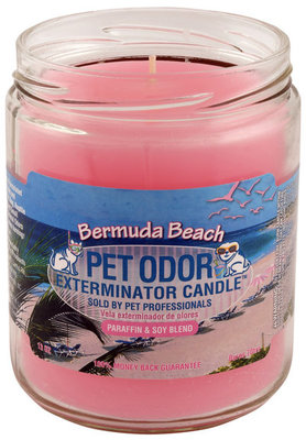 Bermuda Beach Pet Odor Exterminator Candle