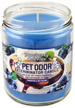 Pet Odor Exterminator Candle, Blueberry Cobbler
