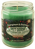Pet Odor Exterminator Candle, Evergreen & Berries
