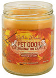Pet Odor Exterminator Candle, Fall N Leaves