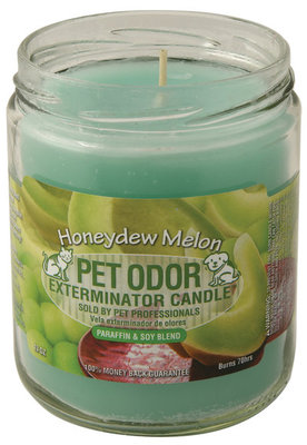 Pet Odor Exterminator Candle, Honeydew Melon