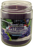 Pet Odor Exterminator Candle, Jammin' Jelly