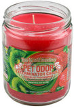 Pet Odor Exterminator Candle, Kiwi Twisted Strawberry