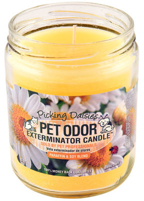 Pet Odor Exterminator Candle, Picking Daisies
