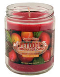Pet Odor Exterminator Candle, Sugar Plum
