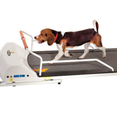 PetRun Small Medium Breed Treadmill (PR720F)