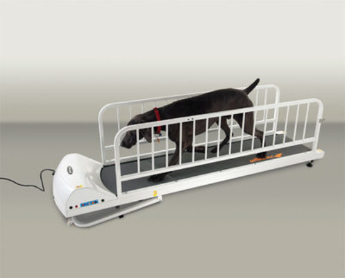 PetRun Large Breed Treadmill (PR725)