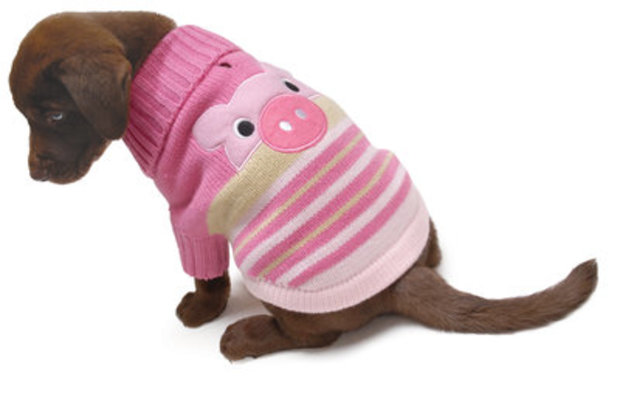 Pig-A-Boo Knit Dog Sweater