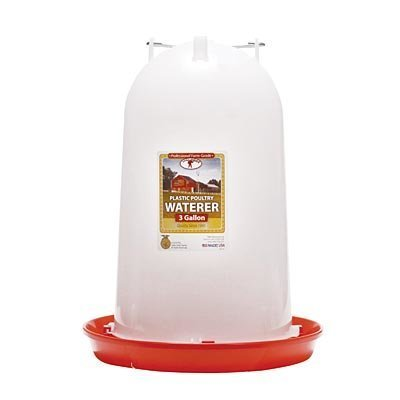 Little Giant Plastic Poultry Fountain,  3 Gallon