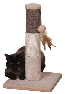 Pokey Scratching Post