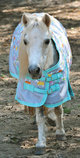 "Pony Poppins 600D ""Blankies"" Expression Turnout Blanket, 240g"