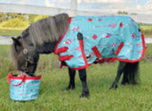 "Pony Poppins ""Follow Your Arrow"" Expression Turnout Blanket"