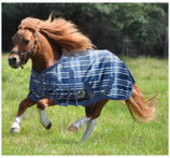 Pony Poppins Solaris Turnout Blanket, Sapphire Plaid/Blue Trim