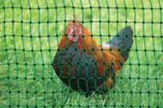 Powerfields Electric Poultry Pen