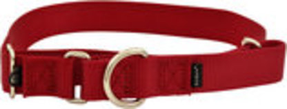 "The Premier Dog Collar, 3/4"" x 8"" - 12"""