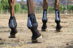 Pro Performance Show Jumping Boots, Hind Pairs