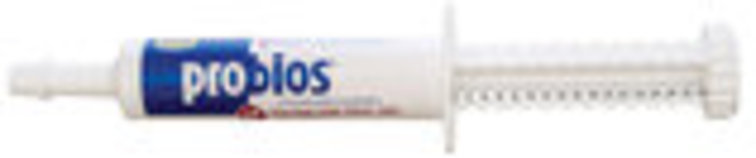 Probios Equine One Oral Gel