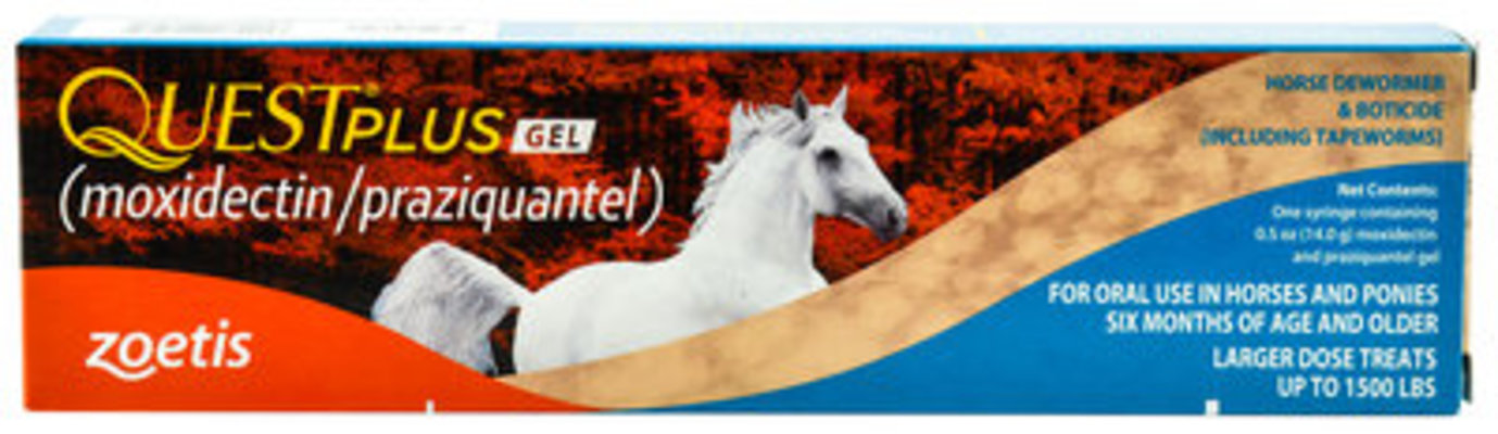 Quest Plus Gel Horse Dewormer, 1-dose