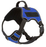 Quest Multi-Purpose Harness, Small