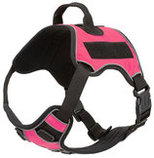 Quest Multi-Purpose Harness, XLarge
