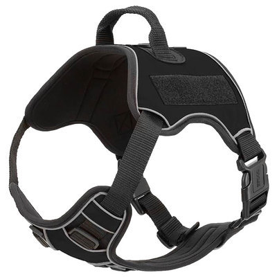 Quest Multi-Purpose Harness, XSmall