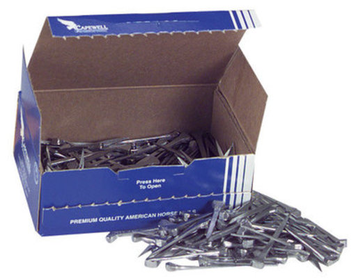 Size 5 Race Head Nails, Box of 250