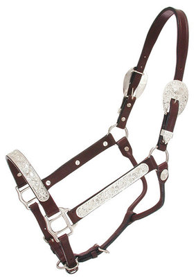 Raised Oval Horse Show Halter