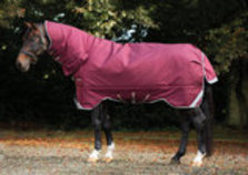 Rambo All-In-One Heavy Weight Horse Blanket, 400g
