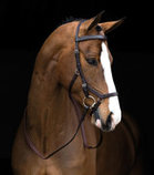 Rambo Micklem Competition Bridle, Dark Havana