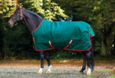 Rambo Original Heavy Weight Horse Blanket