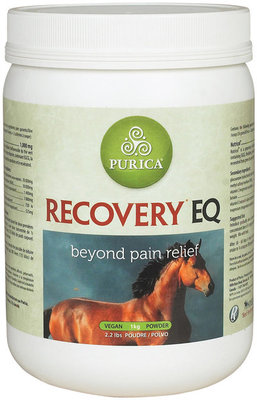 11 lb Recovery® EQ Powder