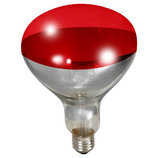 Red Heat Lamp Bulb, 250 watt/120v