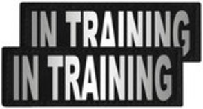 "Reflective ""In Training"" Patches, Set of 2"