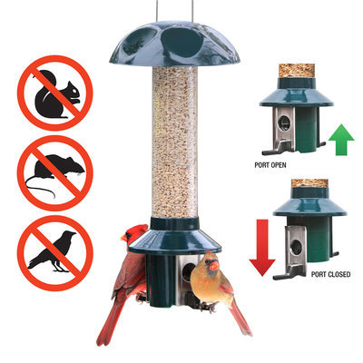 Roamwild PestOff Bird Feeder, Sunflower/Mixed