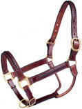 Royal King Braided Leather Halter