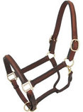 Royal King Raised Leather Halter