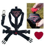Safe & Sound Harness