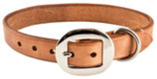 San Saba Harness Dog Collar