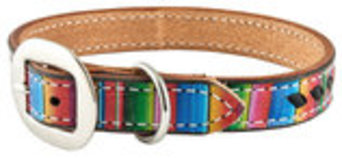 San Saba Serape Dog Collar