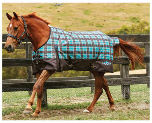 Saxon 1200D Standard Neck Blanket 180g, Teal Plaid