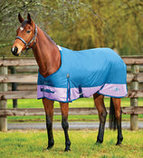 Saxon 600D Standard Neck Turnout Blanket, 180g
