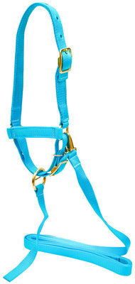 Nylon Sheep Halter, 3/4""