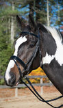 Shires Blenheim Patent Leather Dressage Bridle